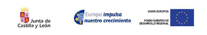 Logotipo proyecto financiado - Universidad de Burgos, Junta de Castilla y León y Fondos FEDER