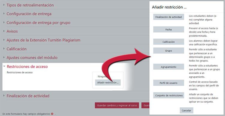 Restricciones de acceso disponibles en UBUVirtual